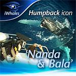 Nanda and Bala